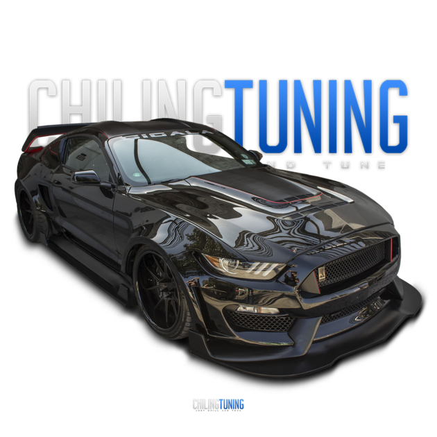 FULL BODY KIT Mustang GT350RR