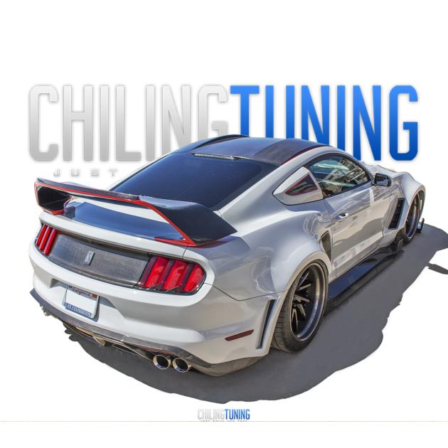 FULL BODY KIT Ford Mustang GT350RR